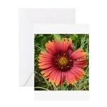 Firewheel on Fire Greeting Card