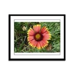 Firewheel on Fire Framed Panel Print