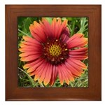 Firewheel on Fire Framed Tile