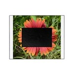 Firewheel on Fire Picture Frame