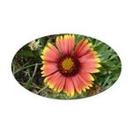 Firewheel on Fire Oval Car Magnet