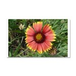 Firewheel on Fire Car Magnet 20 x 12