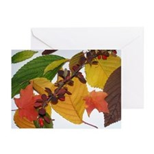 Autumn Leaves by Celeste Sheffey Greeting Cards (P