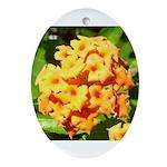 Lantana Orange Explosion Cluster Ornament (Oval)