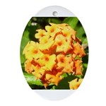 Lantana Orange Explosion Cluster Ornament (Oval)