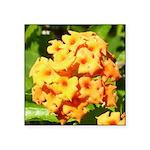 Lantana Orange Explosion Cluster Sticker