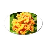 Lantana Orange Explosion Cluster Wall Decal