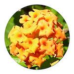 Lantana Orange Explosion Cluster Round Car Magnet