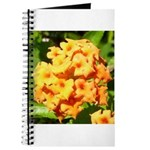 Lantana Orange Explosion Cluster Journal