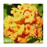Lantana Orange Explosion Cluster Tile Coaster