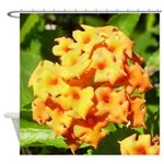 Lantana Orange Explosion Cluster Shower Curtain