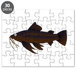 Armored Catfish fish Puzzle