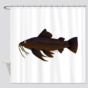 Armored Catfish fish Shower Curtain