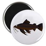 Armored Catfish fish 2.25