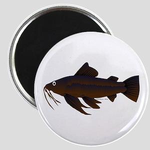 Armored Catfish fish Magnet