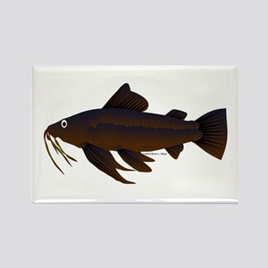 Armored Catfish fish Rectangle Magnet