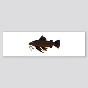 Armored Catfish fish Bumper Sticker