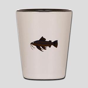 Armored Catfish fish Shot Glass