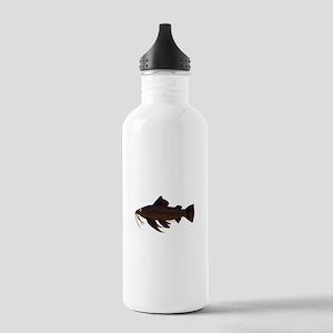 Armored Catfish fish Water Bottle