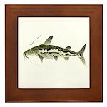Spotted Sorubim (Shovelnosed Catfish) Framed Tile