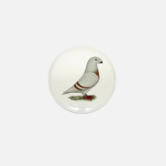 Show Racer Red Bar Pigeon Mini Button