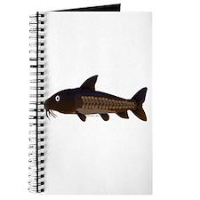 Amazon Ripsaw Catfish fish Journal