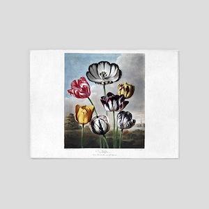 Tulip, The Temple of Flora 5'x7'Area Rug