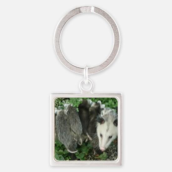 Cute Marsupials Square Keychain