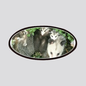 mother opossum in garden with babies face Patch
