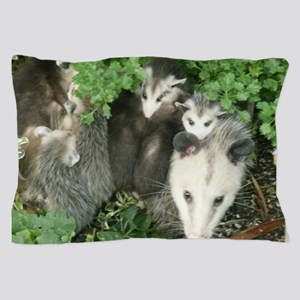 mother opossum in garden with babies f Pillow Case