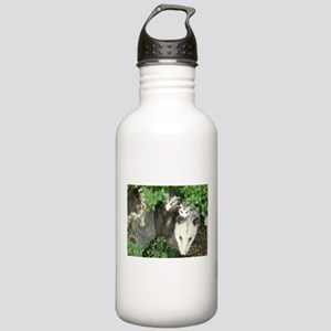 mother opossum in gard Stainless Water Bottle 1.0L