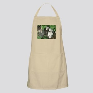mother opossum in garden with babies f Light Apron
