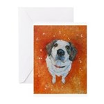 Mr. Neville Greeting Cards (Pk of 20)