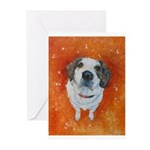 Mr. Neville Greeting Cards (Pk of 10)
