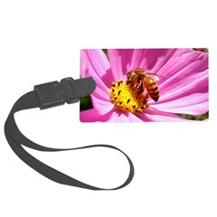 Honey Bee On Pink Wildflower Luggage Tag