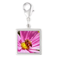 Honey Bee on Pink Wildflower Silver Square Charm
