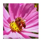 Honey Bee on Pink Wildflower Tile Coaster