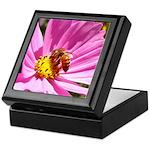 Honey Bee on Pink Wildflower Keepsake Box