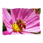 Honey Bee on Pink Wildflower Pillow Case