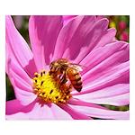 Honey Bee On Pink Wildflower King Duvet