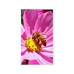 Honey Bee on Pink Wildflower 3'x5' Area Rug