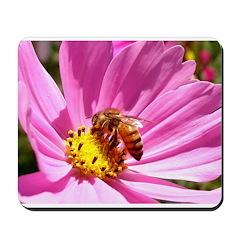 Honey Bee on Pink Wildflower Mousepad