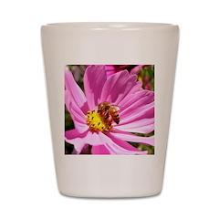 Honey Bee on Pink Wildflower Shot Glass