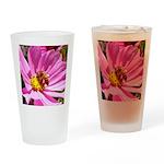 Honey Bee on Pink Wildflower Drinking Glass
