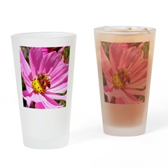 Honey Bee on Pink Wildflower Drinking Glass