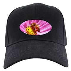 Honey Bee on Pink Wildflower Baseball Hat
