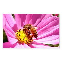 Honey Bee on Pink Wildflower Sticker (Rectangle)