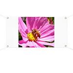 Honey Bee on Pink Wildflower Banner