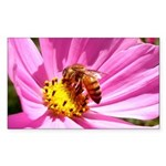 Honey Bee on Pink Wildflower Sticker (Rectangle 50