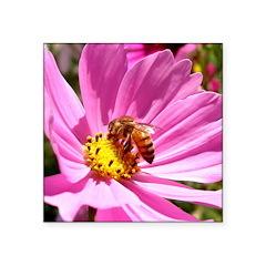 Honey Bee on Pink Wildflower Square Sticker 3